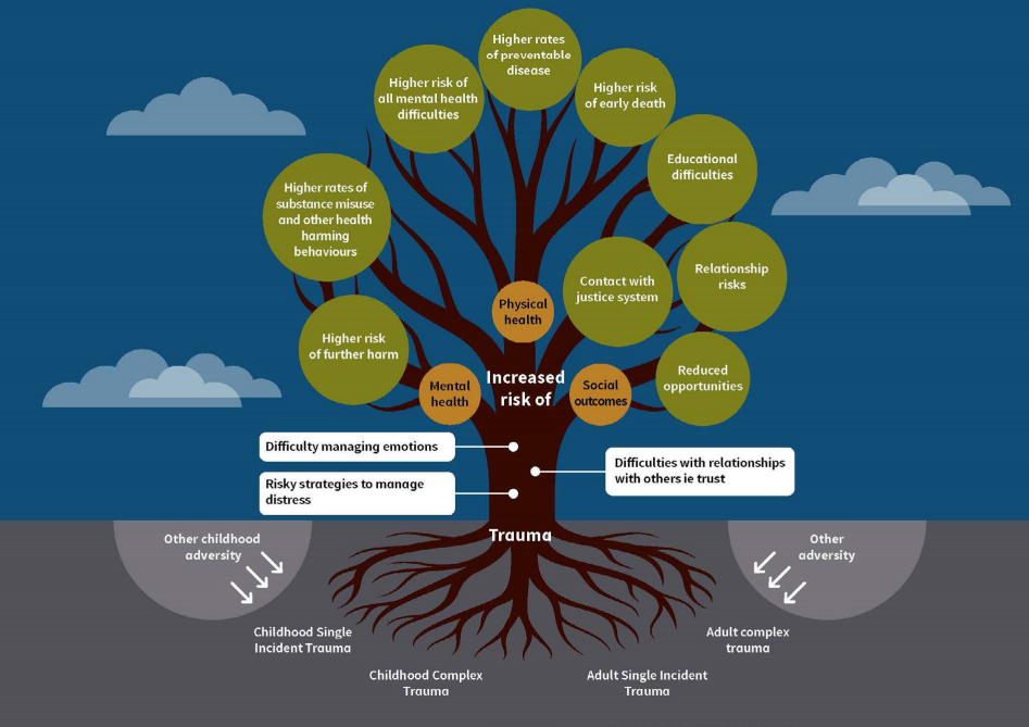 Diagram showing the impact of trauma on an individual's outcomes